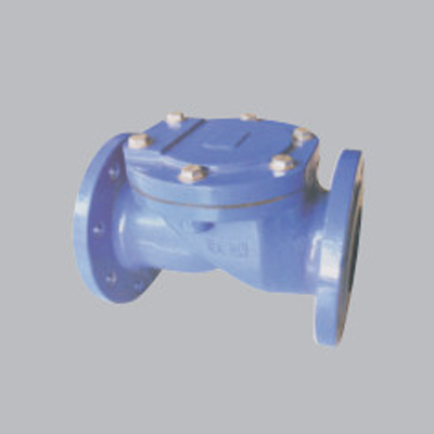Flanged-Rubber-Sheet-Check-Valve-amd[1]